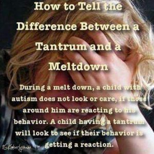 how-to-tell-the-difference-between-a-autistic-meltdown-and-a-tantrum
